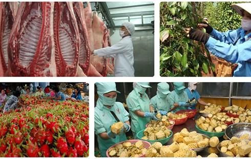 """Nhiều """"nút thắt"""" xuất khẩu nông sản Việt đang dần được tháo gỡ - Ảnh 1."""