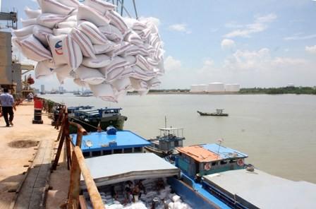 Giá gạo Việt Nam vượt trội Thái Lan, Ấn Độ nhờ ưu thế chất lượng - Ảnh 2.