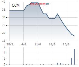 Không rời hẳn chứng trường để tái cơ cấu, Xi măng Cần Thơ quyết định lên giao dịch trên Upcom - Ảnh 1.
