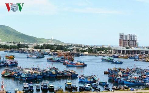 Xăng dầu tăng giá, sản lượng đánh bắt giảm khiến ngư dân lỗ nặng - Ảnh 1.