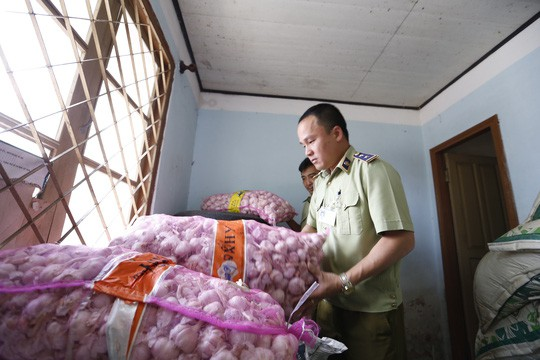Tịch thu gần 4 tấn cà rốt Trung Quốc nhập lậu - Ảnh 2.
