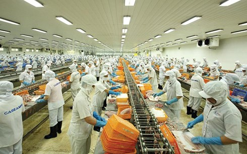 Xuất khẩu gạo và rau quả đối mặt nhiều khó khăn những tháng cuối năm - Ảnh 1.