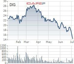 Cổ phiếu DIG giảm sâu, Chủ tịch công ty chỉ mua hơn nửa số cổ phần đăng ký - Ảnh 1.