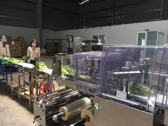TP HCM nhập nông sản, nhập luôn hàng trăm tấn rác mỗi đêm - Ảnh 2.