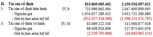 Bán heo, bán đất, bán con… Hùng Vương (HVG) đã có lãi trở lại, quý 3/2018 đạt 30 tỷ đồng lãi ròng hợp nhất - Ảnh 5.