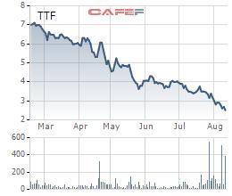 Cổ phiếu nằm sàn với giao dịch đột biến, Gỗ Trường Thành (TTF) tiếp tục nhấn mạnh sẽ phát triển hợp đồng cùng Vingroup - Ảnh 2.