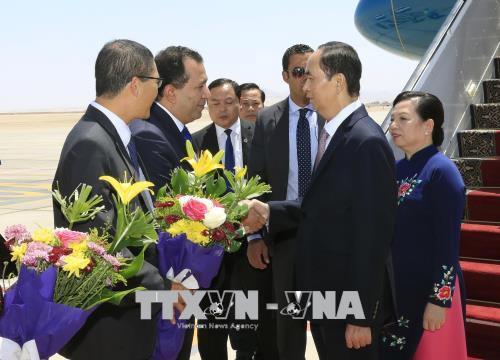 Lần đầu tiên Chủ tịch nước Việt Nam thăm chính thức Ai Cập - Ảnh 1.
