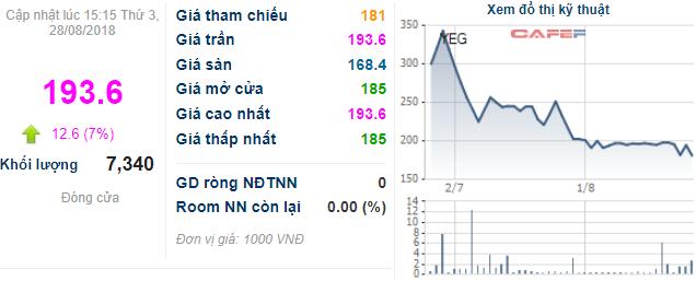 Yeah1 (YEG) tăng trần ngay sau khi công bố chia cổ phiếu phưởng, tỷ lệ 1:2 - Ảnh 1.