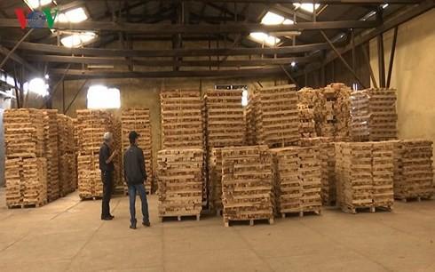 Doanh nghiệp kiến nghị kiểm soát chặt đồ gỗ xuất khẩu - Ảnh 1.