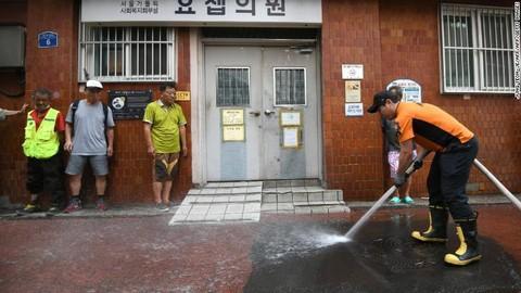 Hàn Quốc nóng kỷ lục: 29 người tử vong, đệm cao su cháy đen vì phơi nắng và trứng thì liên tục nở thành gà con - Ảnh 3.