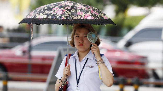 Hàn Quốc nóng kỷ lục: 29 người tử vong, đệm cao su cháy đen vì phơi nắng và trứng thì liên tục nở thành gà con - Ảnh 5.