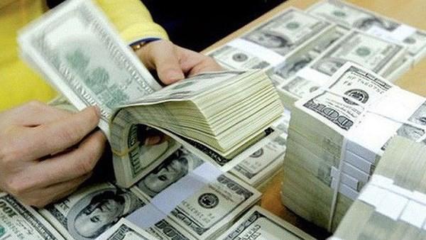 Lĩnh vực nào đang dẫn đầu dòng vốn đầu tư Việt Nam ra nước ngoài? - Ảnh 1.