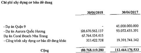 An Dương Thảo Điền (HAR): Lợi nhuận quý 2 sụt giảm mạnh, đầu tư 214 tỷ đồng vào Xà bông Cô Ba - Ảnh 2.
