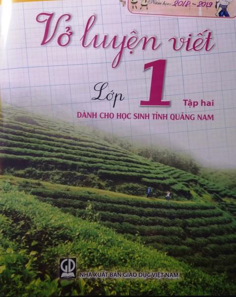 Xôn xao về Vở luyện viết dành cho học sinh tỉnh Quảng Nam - Ảnh 3.