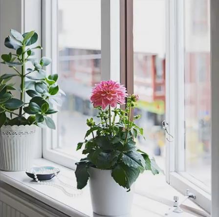 Nàng độc thân gây sốt có căn hộ chung cư nhỏ 32m2 đẹp mê ly - Ảnh 9.