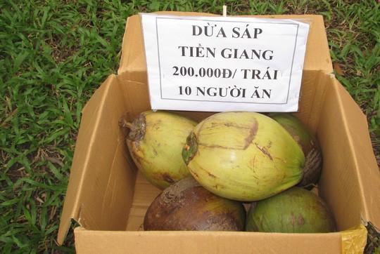 Dừa sáp 250.000 đồng/quả, nông dân rủ nhau mua dừa giống về trồng - Ảnh 1.