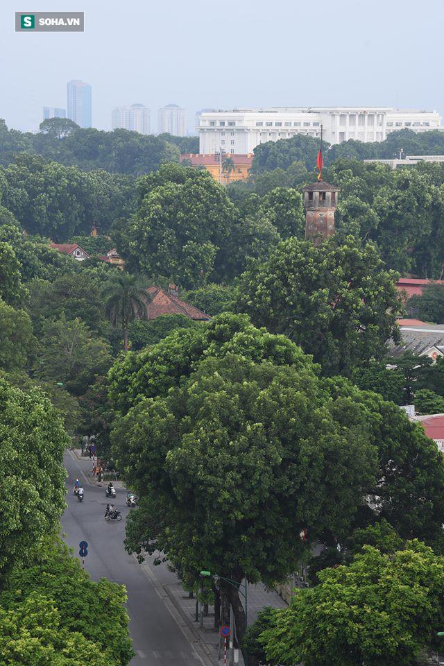 [TRỰC TIẾP] Khắp nơi treo cờ rủ Quốc tang Chủ tịch nước Trần Đại Quang - Ảnh 27.