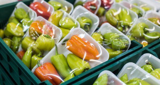 Những hóa chất rò rỉ từ nhựa vào thực phẩm gây hại thế nào đến sức khỏe? - Ảnh 2.
