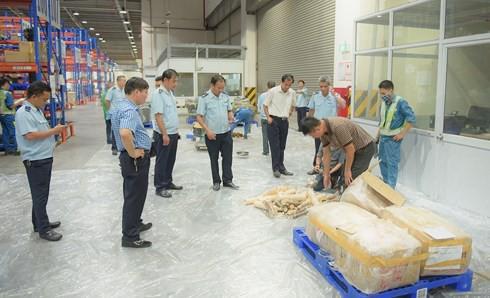 Bắt giữ gần 1 tấn ngà voi, vẩy tê tê vận chuyển theo đường hàng không - Ảnh 1.