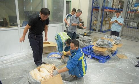 Bắt giữ gần 1 tấn ngà voi, vẩy tê tê vận chuyển theo đường hàng không - Ảnh 2.