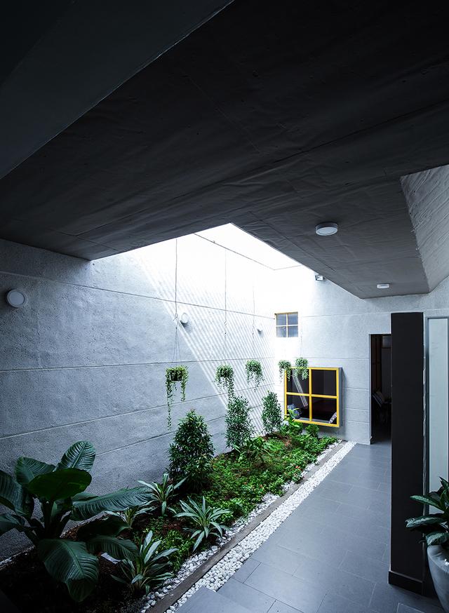 Trong nhà không có nhiều cửa sổ, tuy vậy ngôi nhà vẫn vô cùng thoáng sáng nhờ những khoảng mái kính trên trần nhà.