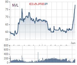 Tăng 16 phiên liên tiếp, vốn hóa Novaland đã vượt ngưỡng 50.000 tỷ - Ảnh 1.