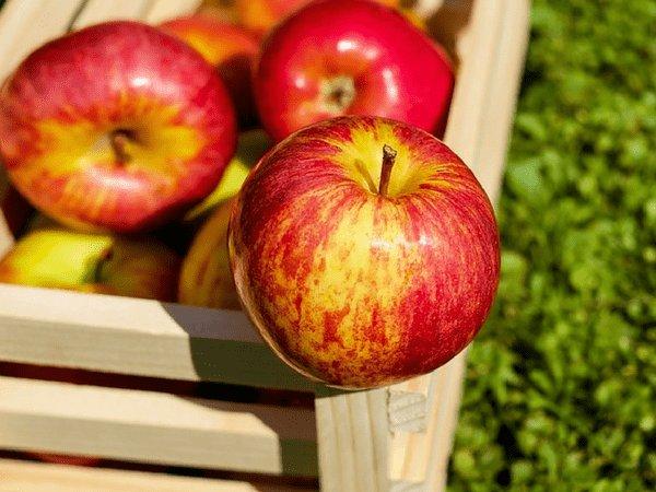Ăn 7 loại thực phẩm quen thuộc này không đúng thời điểm sẽ khiến bạn hối hận vô cùng - Ảnh 4.