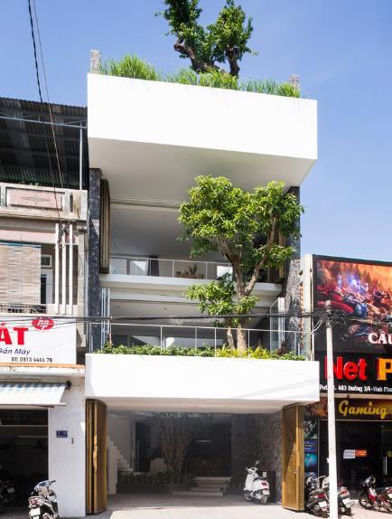 Nhà phố ở Nha Trang gây sốt với thiết kế xanh mướt nhờ những miệt vườn nhỏ - Ảnh 1.