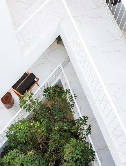 Nhà phố ở Nha Trang gây sốt với thiết kế xanh mướt nhờ những miệt vườn nhỏ - Ảnh 12.