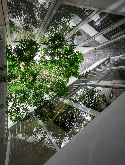 Nhà phố ở Nha Trang gây sốt với thiết kế xanh mướt nhờ những miệt vườn nhỏ - Ảnh 13.