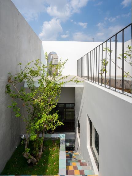 Trên sân thượng chủ nhà cũng trồng nhiều cây xanh.