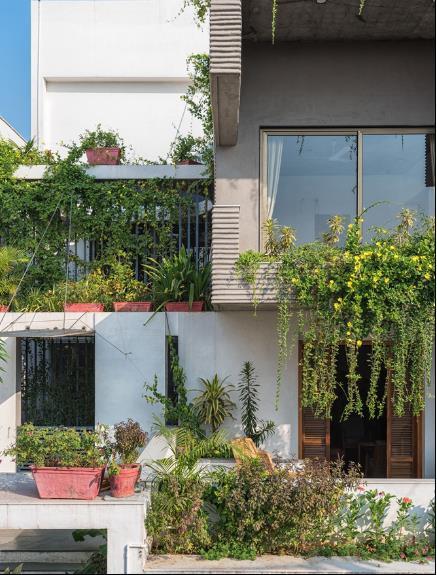 Xung quanh ngôi nhà được trồng rất nhiều cây xanh mang bầu không khí trong lành và tươi mát cho khắp không gian.