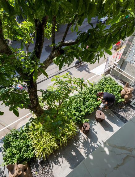 Nhà phố ở Nha Trang gây sốt với thiết kế xanh mướt nhờ những miệt vườn nhỏ - Ảnh 3.