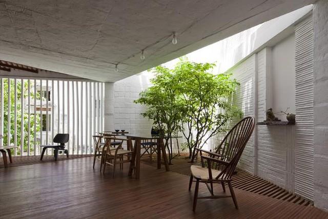 Góc tiếp khách tuyệt đẹp được bố trí cạnh giếng trời thoáng sáng. Toàn bộ sàn nhà được làm bằng hệ thống sàn gỗ sạch và đẹp.