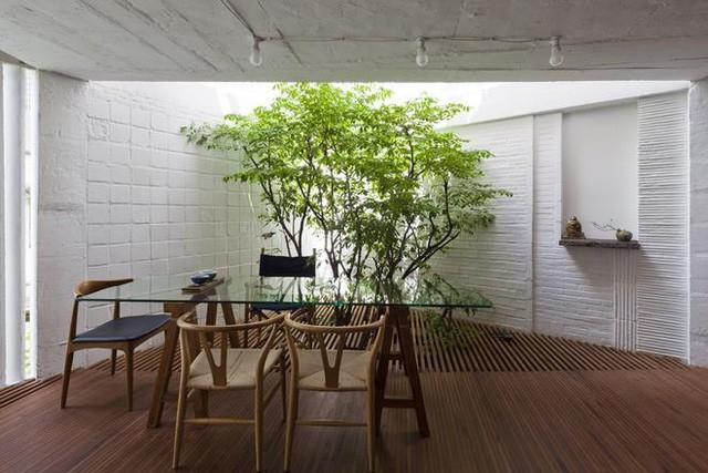 Trong nội thất rất gần gũi với tự nhiên này, các vật liệu đều để mộc: gạch không trát, gỗ không sơn.
