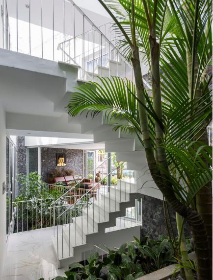 Nhà phố ở Nha Trang gây sốt với thiết kế xanh mướt nhờ những miệt vườn nhỏ - Ảnh 10.