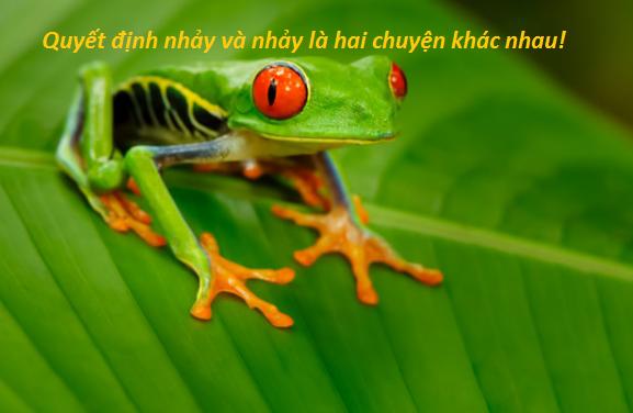 Có 3 con ếch ngồi trên 1 chiếc lá, 1 con quyết định nhảy xuống sông, hỏi còn lại bao nhiêu con ếch trên chiếc lá đó? - Ảnh 2.