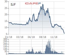 Chốt lãi ở vùng đỉnh, các lãnh đạo Sao Thái Dương (SJF) đăng ký mua vào khi cổ phiếu mất 3/4 giá trị - Ảnh 1.