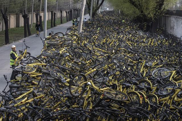 Ứng dụng chia sẻ xe đạp – Ý tưởng khởi nghiệp 'sai' nhất trong năm 2018, phiên bản fast and furious của bong bóng công nghệ - Ảnh 3.