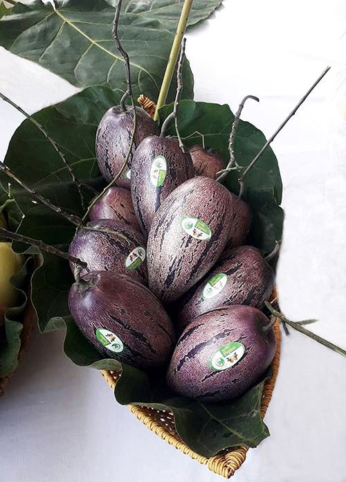 Người dân Đà Lạt đổ xô đặt mua hoa, quả độc lạ chơi Tết - Ảnh 2.