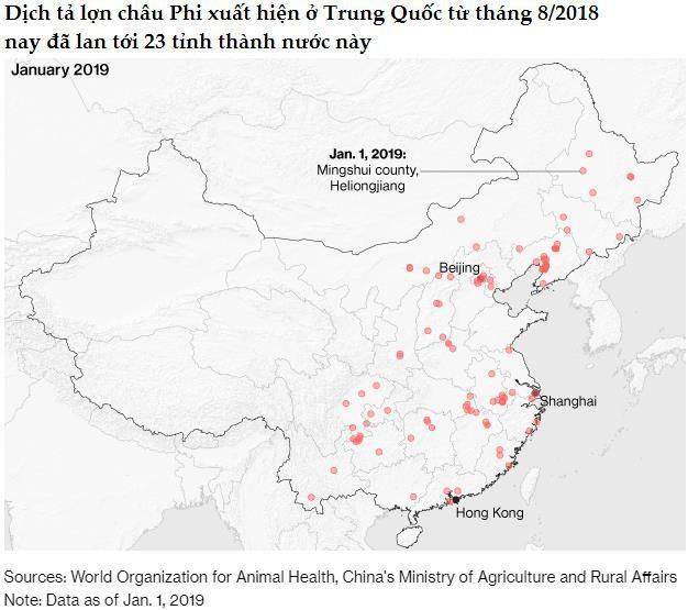 2019 có thể là năm đại khủng hoảng của ngành thịt lợn Trung Quốc - Ảnh 1.