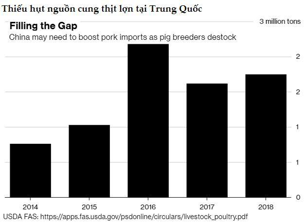 2019 có thể là năm đại khủng hoảng của ngành thịt lợn Trung Quốc - Ảnh 2.