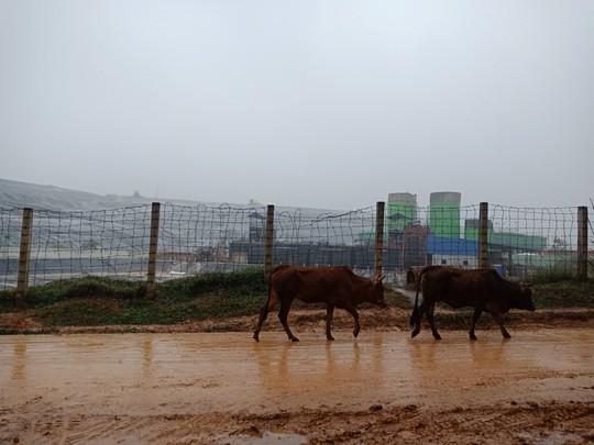 Người dân chặn xe chở rác: 12 quận Hà Nội ảnh hưởng, khó cầm cự tiếp - Ảnh 11.