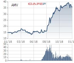 AMV báo lãi quý 4 đạt 122 tỷ đồng, nâng tổng LNST năm 2018 lên 219 tỷ đồng - Ảnh 1.