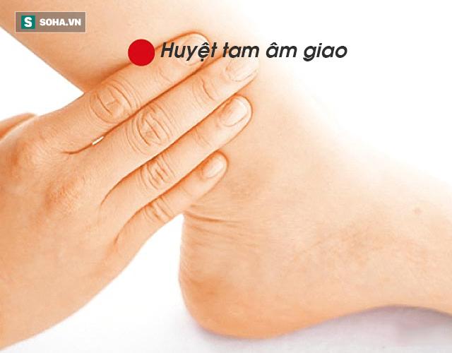10 lời khuyên ngắn gọn của Quốc y Đại sư TQ: Bí quyết dưỡng sinh xua đuổi bệnh tật - Ảnh 8.