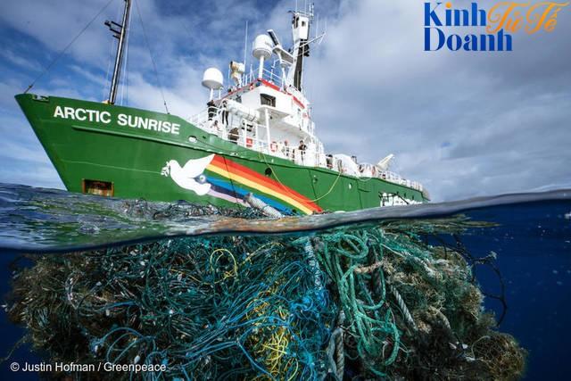 Ngăn Nhật đánh bắt cá voi, chống Mỹ thử bom nguyên tử, tổ chức hoạt động vì môi trường này khiến cả thế giới ngưỡng mộ - Ảnh 3.