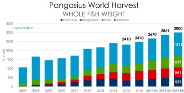 Năm 2018, xuất khẩu cá tra phá kỷ lục 20 năm, riêng Vĩnh Hoàn đã thâm nhập thị trường Trung Quốc thành công - Ảnh 1.