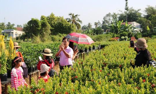 Chưa Tết, làng hoa lớn nhất miền Tây đã nườm nượp khách - Ảnh 10.
