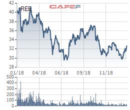 Cơ điện lạnh (REE) thông qua phương án phát hành 2.320 tỷ đồng trái phiếu - Ảnh 1.