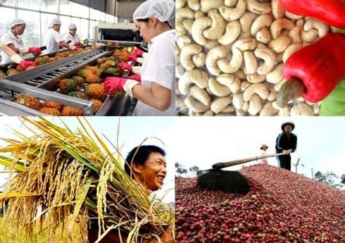 Xóa bỏ 86% dòng thuế nhập khẩu của Việt Nam vào Nhật Bản - Ảnh 1.